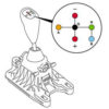 robotizirovannaya korobka pereklucheniya peredach